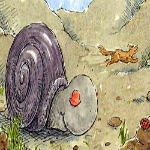 Mr. Coyote Meets Mr. Snail by Jean Agapith