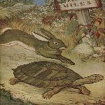 ウサギとカメ イソップ寓話